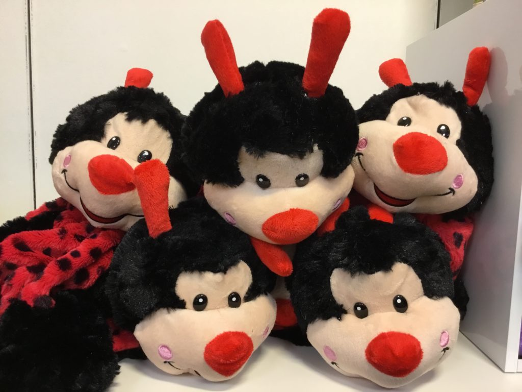 Lady Bug Teddy Bears for Novelty item giveaway to guests a